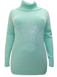 BPC Selection MINT Roll Neck Star Embellished Knitted Jumper - Size 10/12 to 30/32
